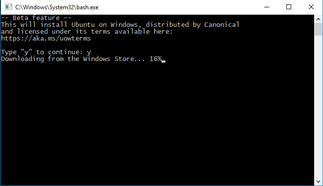 Installing Bash... on Windows